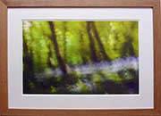 Framed01